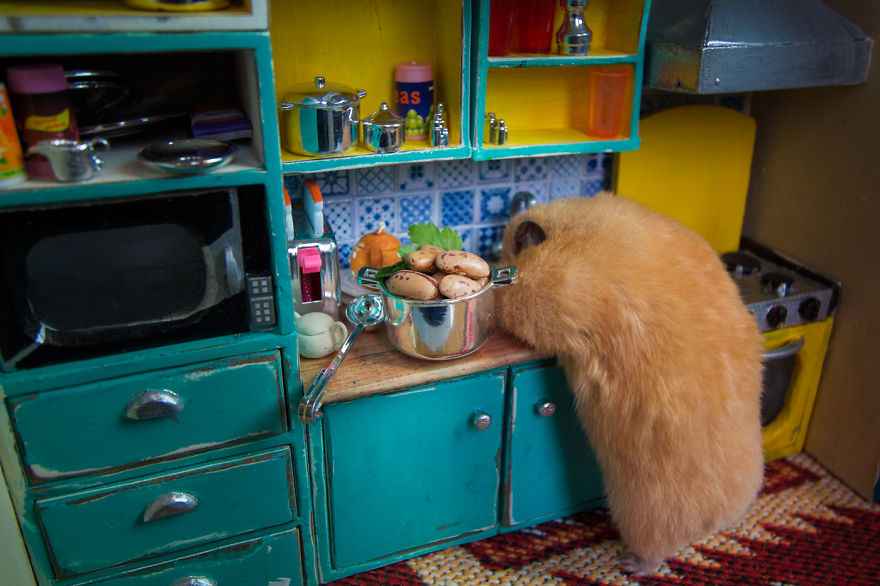 Crafted-miniature-town-for-HUNGRY-HUNGRY-HAMSTERS-online-series-5935d43594ac9__880