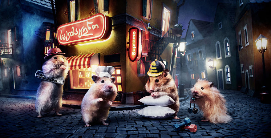 Crafted-miniature-town-for-online-series-HUNGRY-HUNGRY-HAMSTERS-5936987e82642__880